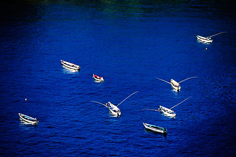 image 8-44-29 Tobago, Fishing boats, Parlatuvier Bay