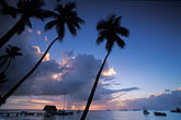 palm stock photography | Tobago, Sunset, Pigeon Point, image id 8-49-8