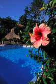 swimming pool stock photography | Tobago, Kariwak Village, image id 8-57-23
