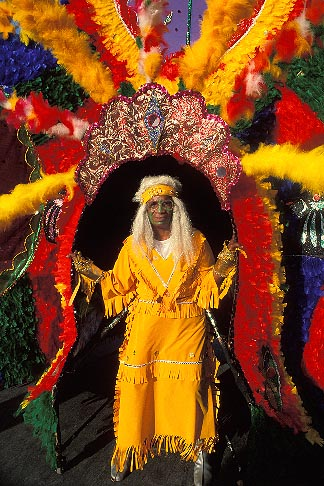 image 8-142-1 Trinidad, Carnival, Costumed dancer