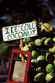 shop sign stock photography | Trinidad, Port of Spain, Coconuts for sale, image id 8-9-3