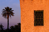 evening stock photography | Tunisia, Nefta, Palm and house, image id 3-1100-104
