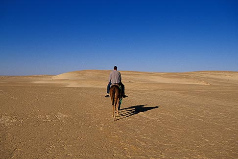image 3-1100-105 Tunisia, Nefta, Camel ride