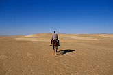 one man only stock photography | Tunisia, Nefta, Camel ride, image id 3-1100-105