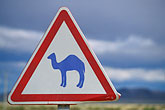 road sign stock photography | Tunisia, Camel crossing, image id 3-1100-22