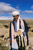 farm animal stock photography | Tunisia, Shepherd holding lamb, image id 3-1100-45