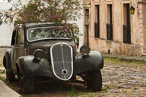 image 8-803-4794 Uruguay, Colonia del Sacramento, Plants growing in antique black automobile