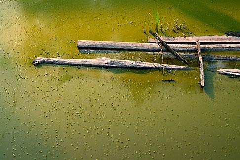 image S3-195-2 Vietnam, Lai Chau, Pond
