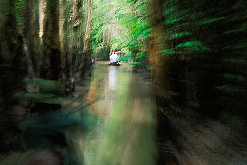 image S3-196-6 Vietnam, Mekong Delta, Canoe ride through jungle