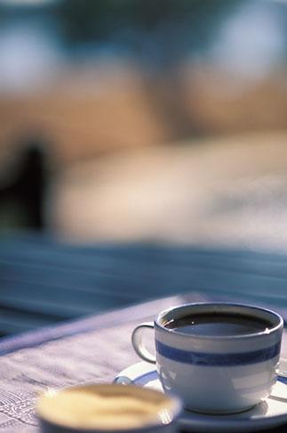 image 7-408-6 Zimbabwe, Zambezi National Park, Matetsi Water Lodge, coffee by the pool