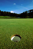 greenville stock photography | Alabama, RTJ Golf Trail, Greenville, Cambrian Ridge, 5th hole, Sherling, image id 2-555-34