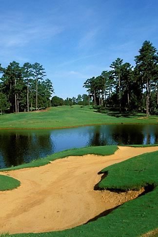 image 2-556-17 Alabama, Robert Trent Jones Golf Trail, Greenville, Cambrian Ridge, 6th hole, Loblolly