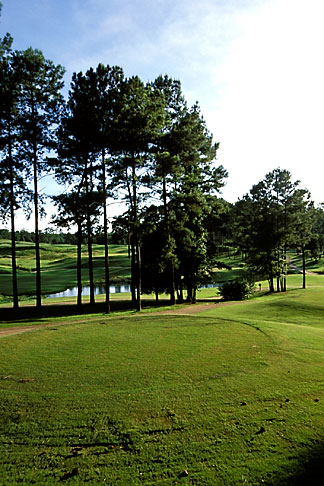 image 2-556-26 Alabama, Robert Trent Jones Golf Trail, Greenville, Cambrian Ridge, 8th tee, Canyon