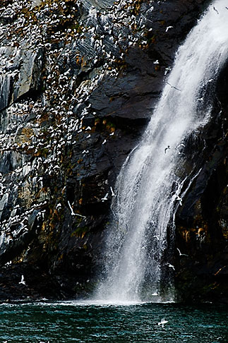 image 5-650-320 Alaska, Prince WIlliam Sound, Waterfall