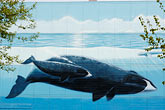 horizontal stock photography | Alaska, Anchorage, Whale mural, image id 5-650-3671