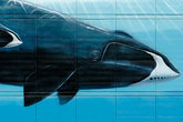blue whale stock photography | Alaska, Anchorage, Whale mural, image id 5-650-774