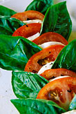 vertical stock photography | Food, Caprese salad, homemade mozzarella with tomatoes and fresh basil, image id 4-600-85