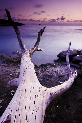 image 4-601-36 Antigua, Hawksbill Bay, Dusk
