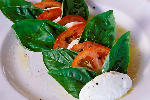 image 4-602-48 Food, Caprese salad, homemade mozzarella with tomatoes and fresh basil
