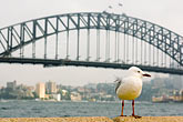 alone stock photography | Australia, Sydney, Sydney Harbour Bridge, image id 5-600-1405