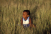 simplicity stock photography | Barbados, Young child in field, image id 0-202-47