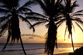 sunset stock photography | Barbados, Bathsheba, Beach, image id 3-483-45