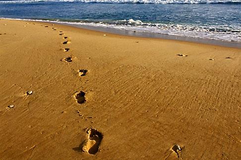 image 3-483-49 Barbados, Bathsheba, Footprints