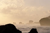 early morning mist stock photography | Barbados, Bathsheba, Beach, image id 3-491-4