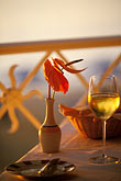 sunset stock photography | Food and Drink, Glass of white wine and anthurium in vase on table outdoors,, image id 3-495-51