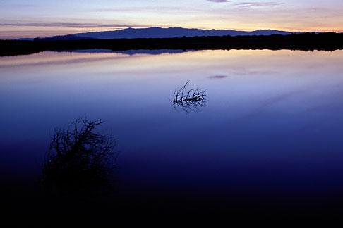 image 0-433-1 California, San Francisco Bay, Don Edwards National Wildlife Sanctuary