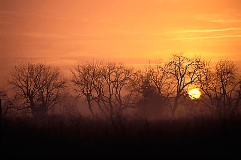 image 0-440-10 California, Contra Costa, Sunrise, Brentwood