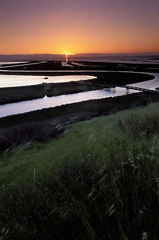 image 1-370-2 California, San Francisco Bay, Don Edwards National Wildlife Sanctuary