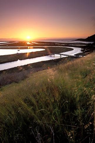 image 1-370-5 California, San Francisco Bay, Don Edwards National Wildlife Sanctuary