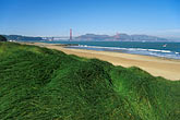 grass stock photography | California, San Francisco, GGNRA, East Beach, Crissy Field, image id 1-75-77