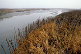 mudflats stock photography | California, Sonoma County, Carl