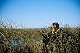 marsh stock photography | California, Suisin Marsh, John Hart at Can-Can Club, image id 1-846-65