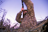 one man only stock photography | California, Suisin Marsh, Duck Hunting, Can-Can Club, image id 1-847-24