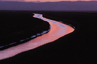 1-859-69 stock photo of California, Sonoma County, San Pablo Bay National Wildlife Refuge, Napa Slough