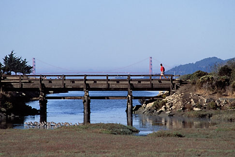 image 2-143-31 California, Eastshore St Park, Golden Gate Bridge, Angel Island and SF Bay wetlands