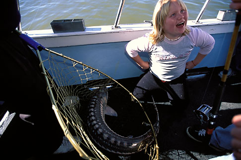 image 2-221-31 California, San Francisco Bay, Sturgeon Fishing, San Pablo Bay