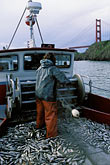one person stock photography | California, San Francisco Bay, Herring Boat near Golden Gate Bridge, image id 2-232-97