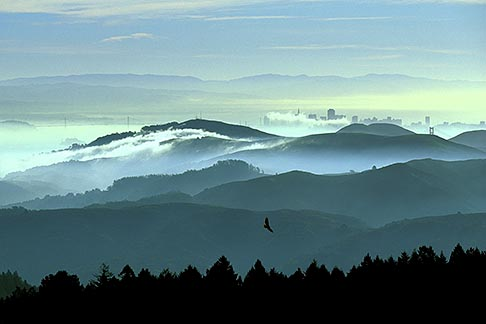 2-236-11  stock photo of California, Marin County, San Francisco and hills from Mount Tamalpais