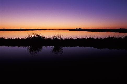 image 2-350-16 California, Solano County, Montezuma Slough, Grizzly Island