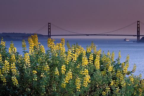 image 2-410-69 California, San Francisco Bay, Golden Gate Bridge from Angel Island