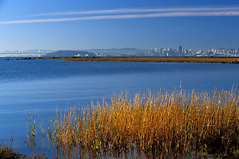 image 2-765-3 California, Eastshore St Park, Early morning, Richmond shoreline
