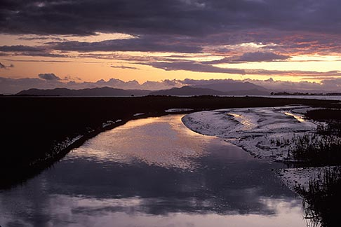 image 3-167-29 California, Eastshore St Park, Marsh at Emeryville Crescent at sunset