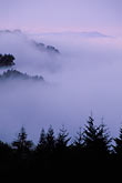 dusk stock photography | California, East Bay Parks, Fog over valley from Tilden Park, image id 6-358-5