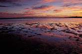 mudflats stock photography | California, Eastshore St. Park, San Francisco Bay at sunset, image id 7-593-3