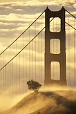 gold stock photography | California, San Francisco Bay, Golden Gate Bridge in fog, image id 9-593-23