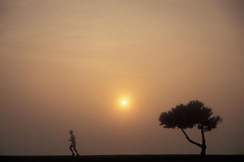 image 9-9-2 Runner in mist